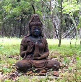 dharma-buddha-full