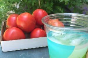 lemonade-tomatoes