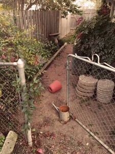neglected-side-yard1